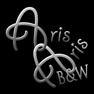 logotipo-arisaris-y-bw-512x512