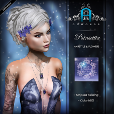 adoness-poinsettia-1024-winter-solstice-ad