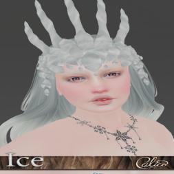 _calico_-ice-ad