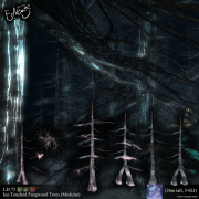 envisage_limitless-ad_ice-touchedfangwoodtrees