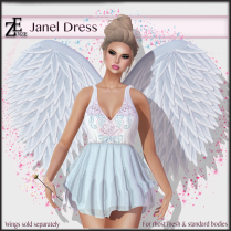 ze-janel-dress-vendor-picture