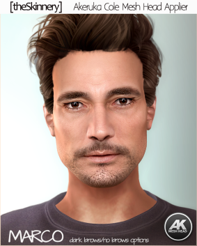 [theSkinnery] Marco (AK) AD