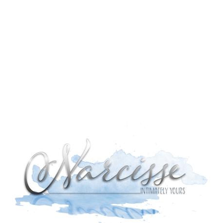 Narcisse-Store-Logo