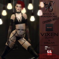 Wicca's Wardrobe - Vixen Outfit & Collar 1024