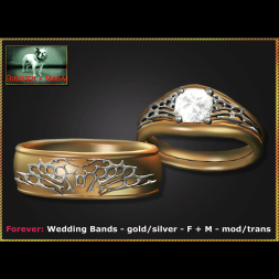 Bliensen - Forever - Wedding Bands - gold silver - F+M Ad