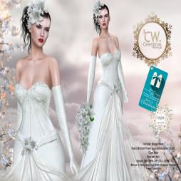 ._(CW)_. Sheer Wedding Dress - The Trunk Show