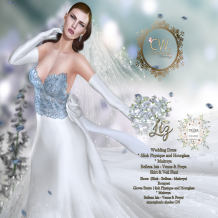 Celestinas Weddings - Liz Weddings Dress AD at @TheTrunkShow