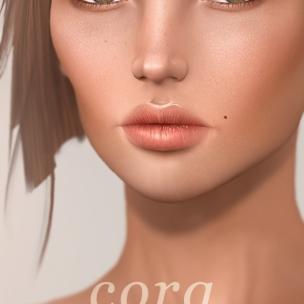 banners-skinfair-cora