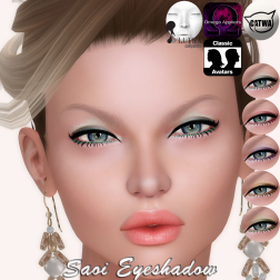 Saoi Eyeshadow Display Vendor