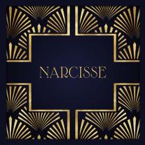 narcisse_logo_2_512